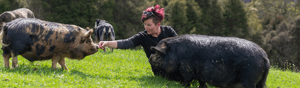 Lisa Grennell with her rescue pigs